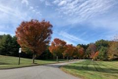 Flintrock-Way-Fall-2019-Courtesy-Dottie-McFalls