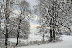 Northside-Winter-4-2-19
