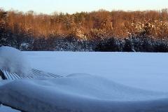 Snowy Hammock