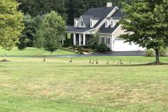Davis-House-5-7-19