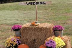 Indian-Spring-Wedding-Oct-2018-4-2-19